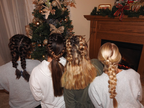 Holiday Braids