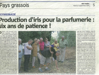 NICE MATIN : Production d'iris