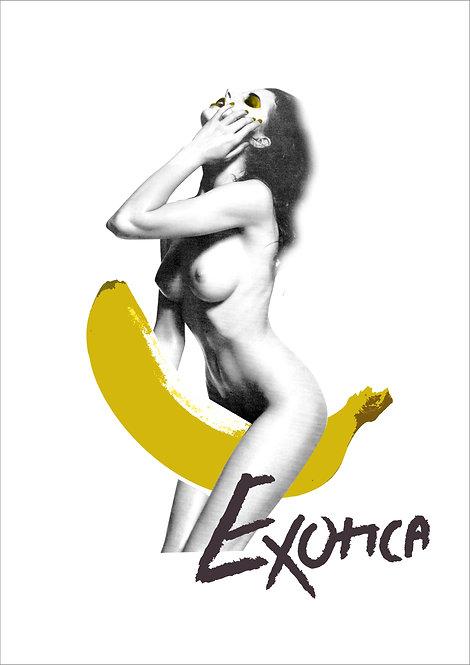 Exotica: Yellow
