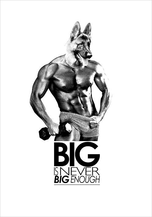 Big Is Never Big Enough