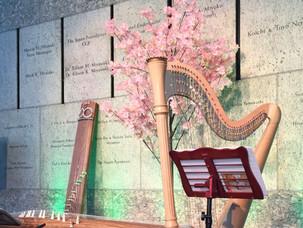 Harp & Koto in Spring setting