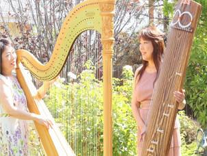 "At lovely ""Harp in LA"" garden"