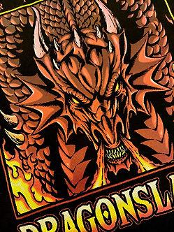 dragonslayer_detail_022821.jpg
