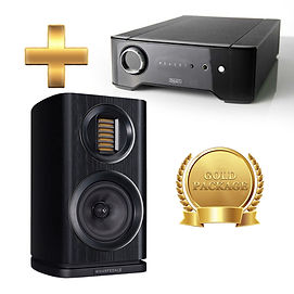 Amp Rega Brio + Speaker - Wharfedale EVO4.1