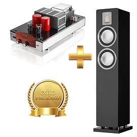 Amp - Pathos Classic One MKIII + Speaker - Audiovector QR3