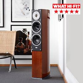 Audiovector - R 3 AVANTGARDE - floorstanding speaker