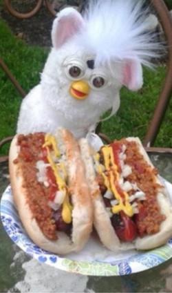 long furby hot dog 1