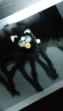 furby spider