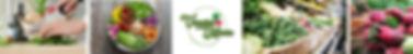 Logomarca Vegetariano Nutricionista Conf