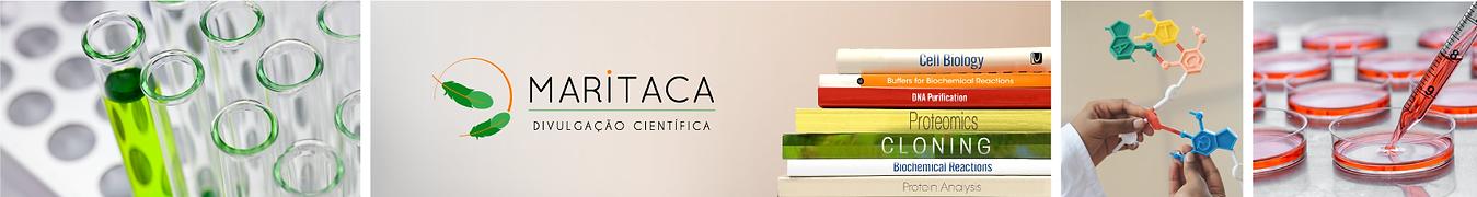 Logomarca-Maritaca-Divulgacao-Cientifica-banner.png