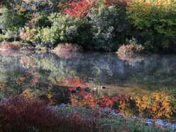 Fall, Peconic River NY