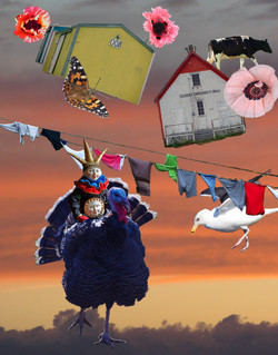Gale force winds. Photomontage.