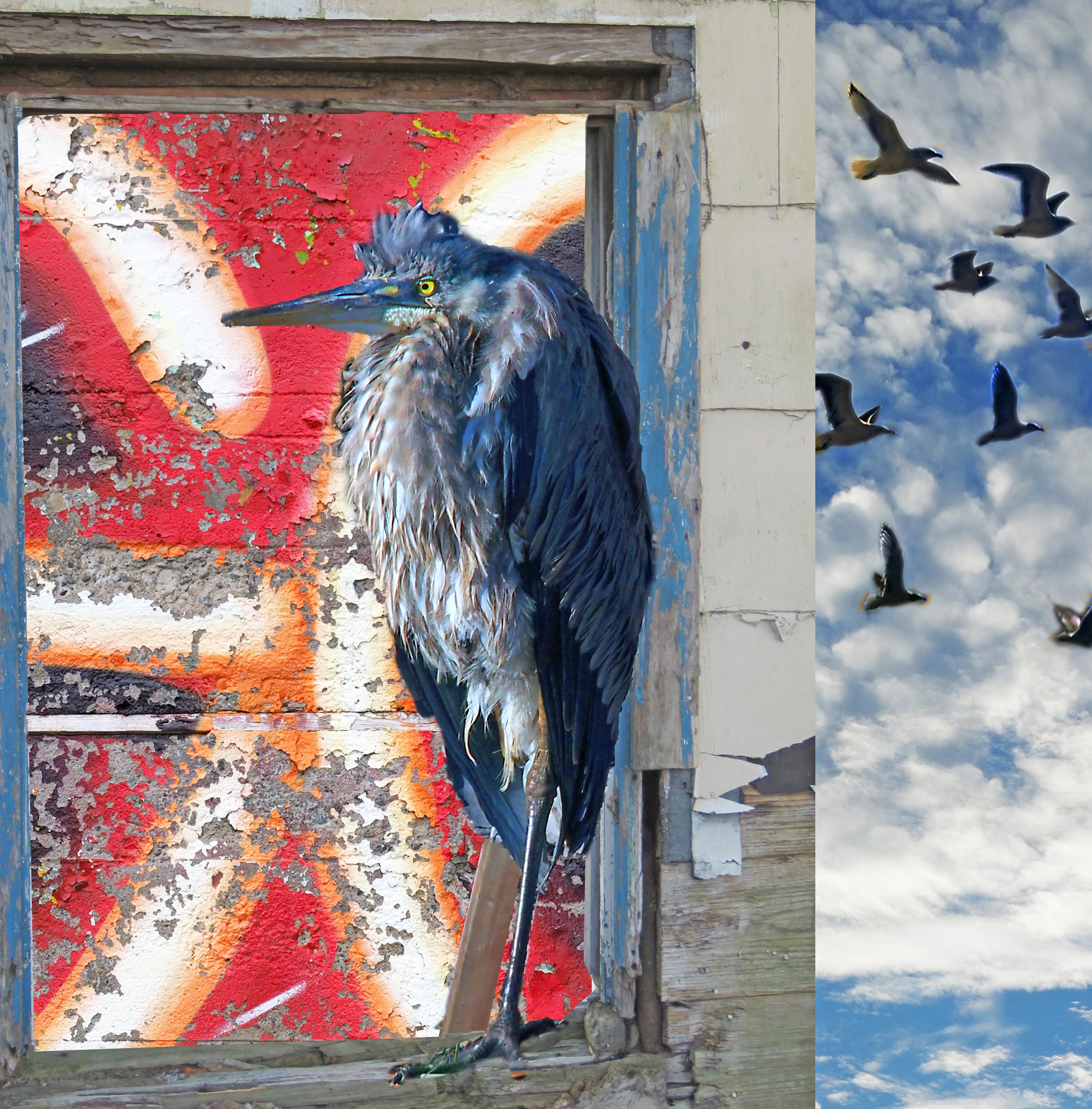 Bird man. Photomontage, encaustic