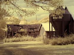 Abandoned farm, Eastport.
