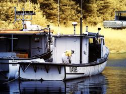 Lobsterman, Delaps Cove NS