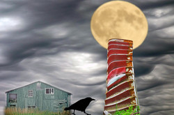 Raven dream. Photomontage.