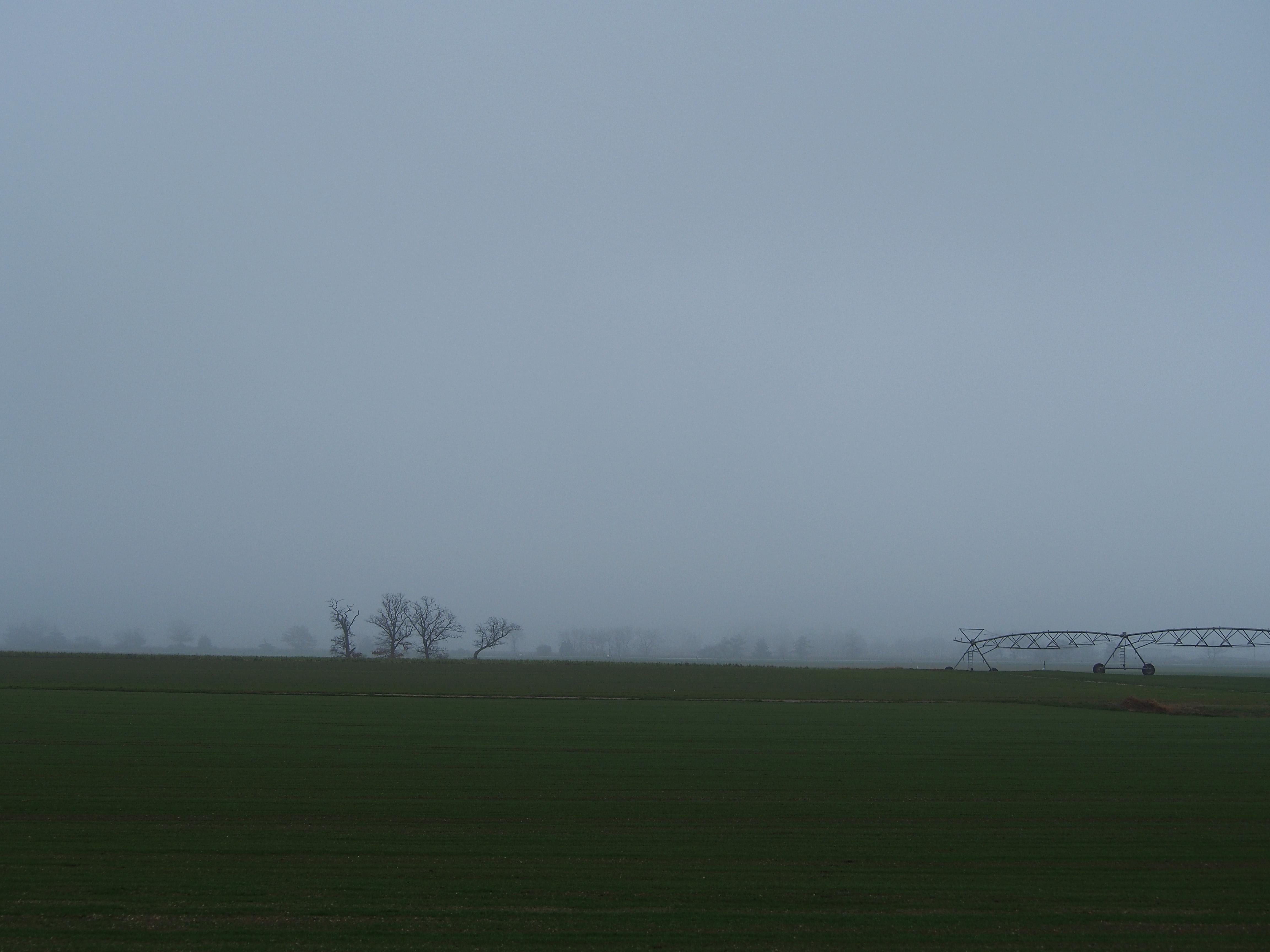 Field, Riverhead NY
