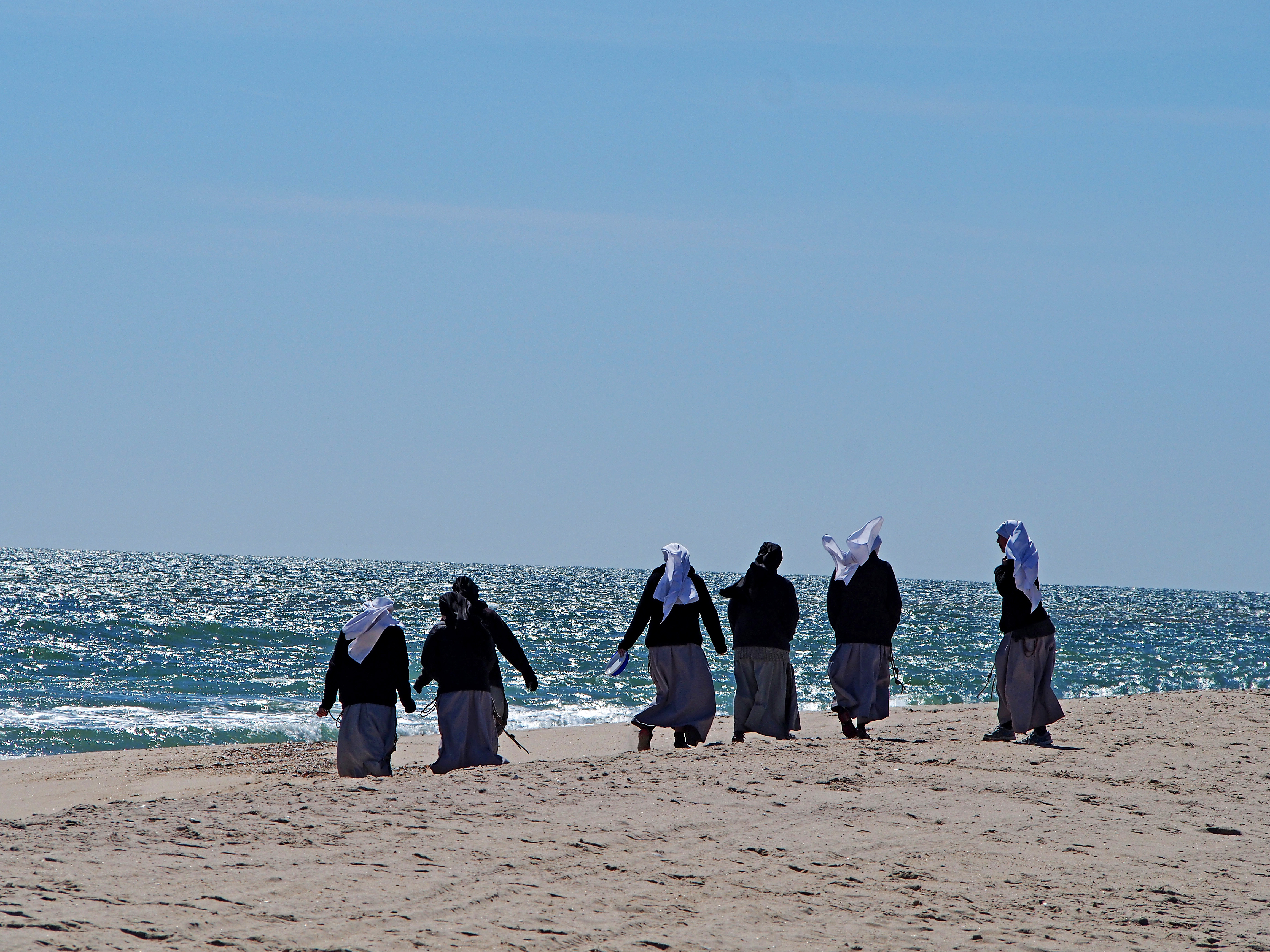 Nuns with a Frisbee.