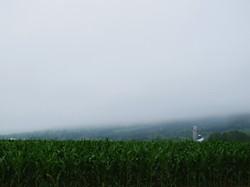Fog, Annapolis Valley NS