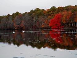 Fall, East End, Long Island NY