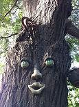 B L Draper, Treekeeping