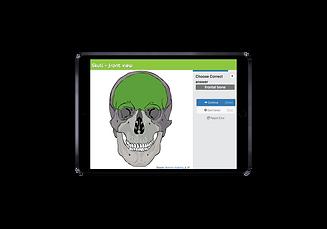 Practice anatomy ipad 2.png