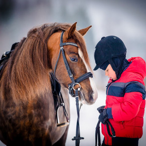 Raising Your Family While Raising Your Horse Business.