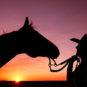 10 Things Every Woman Should Know Before Starting A Horse Business