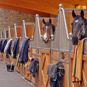 The Horse Barn Management Show! Big Changes Could Mean Turnover With Clients And Horses.