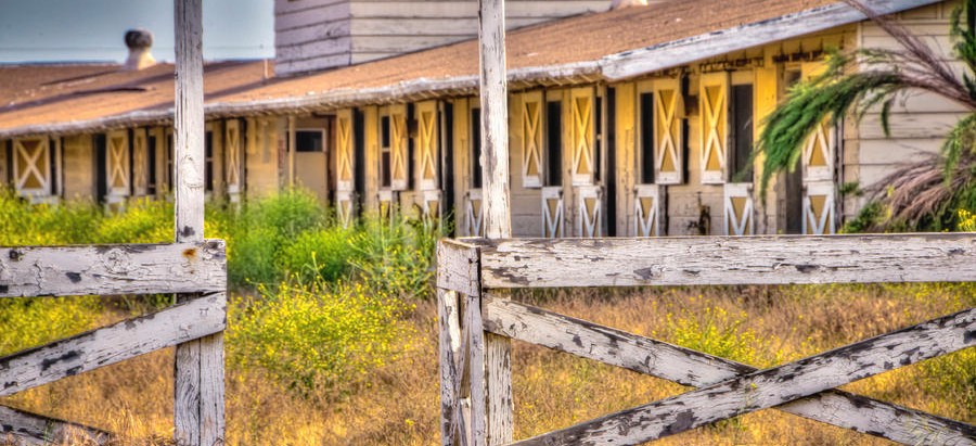 Why Do So Many Horse Boarding Stables Go Out Of Business?