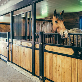 The Horse Barn Management Show! Boarding Contracts And What You Should Have.
