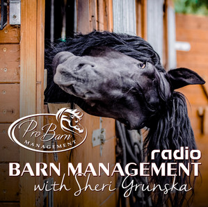 5 Things To Consider For A Successful Boarding Stable Business (Podcast)