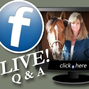 The Horse Barn Management Show! When Is It Time To Remove A Horse From Your Stable?