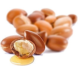 Moroccan-Argan-Oil.jpg
