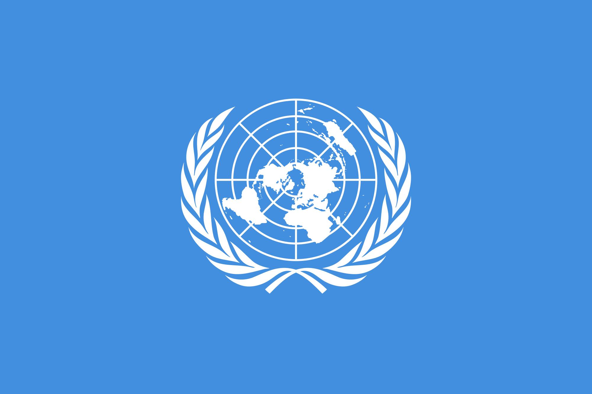 Andrea Carafa United Nations
