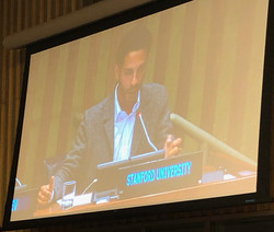 Andrea Carafa, United Nations, Stanford