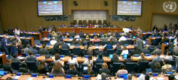 Andrea Carafa, United Nations