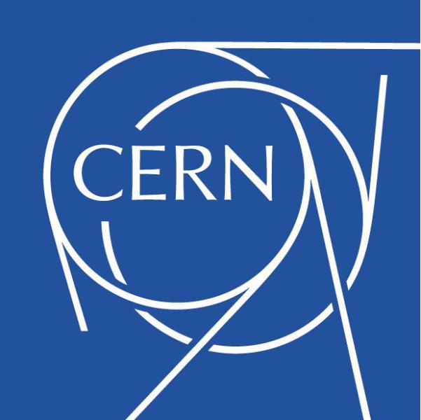 Andrea Carafa CERN