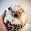 Thumbnail: Hedgehog Kit