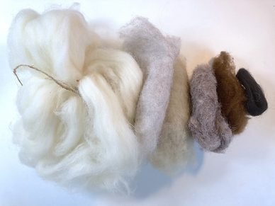 Owl wool colours.HEIC