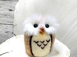 funky owl.jpg