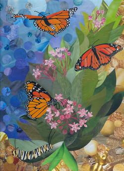 """""""Monarchs"""""""