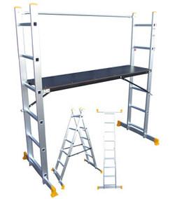 multi ladders.jpg