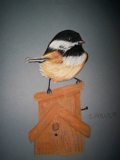 Chickadee on Birdhouse