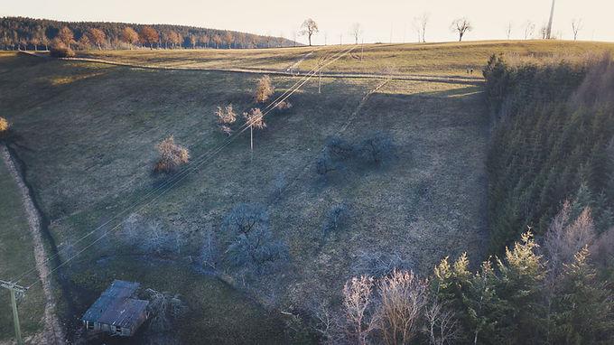 Das erste eigene Aktion Baum-Projekt in Hüfingen im Schwarzwald ist gestartet
