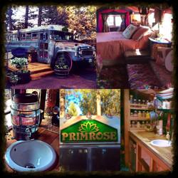 Primrose Tiny Home