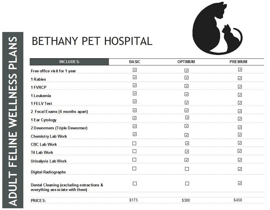 Feline Plan.jpg