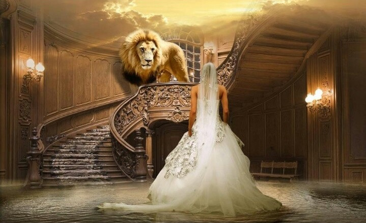 Hearing & Rejoicing In Our Bridegroom's Voice