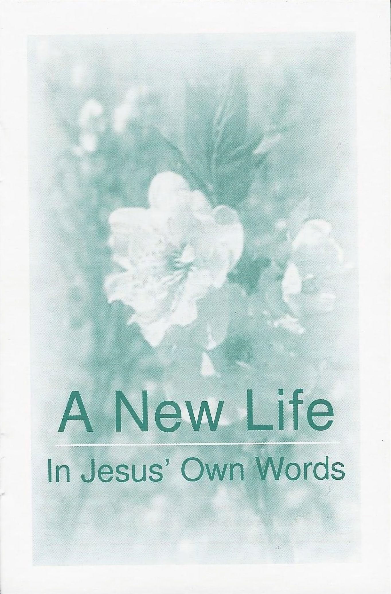 A New Life in Jesus' Own Words #ANL10