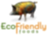 EcoFriendlyLogo 10.2.10.jpeg